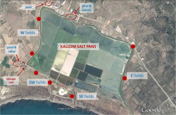 KALLONI PANS FINAL