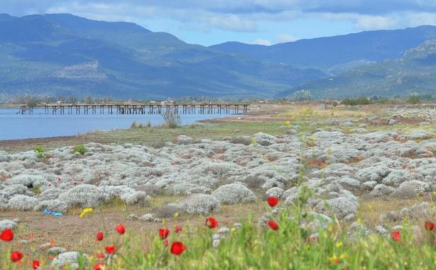 Kalloni Pans Coast; Lesvos