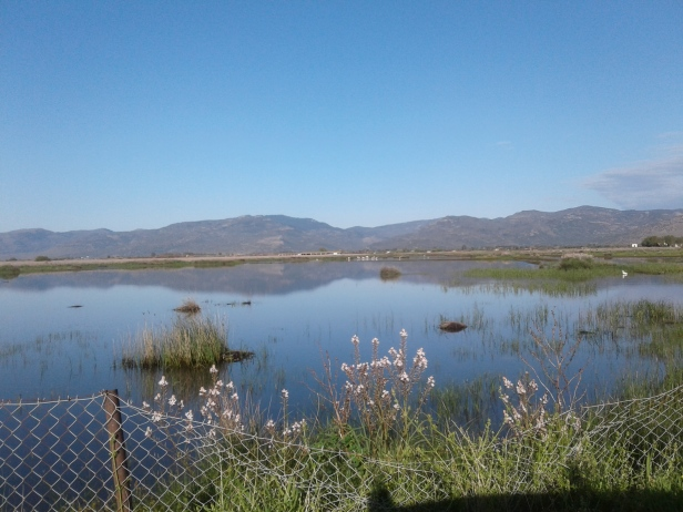 Kalloni Salt Pans seasonal wetlands