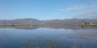 Kalloni Pans seasonal wetlands