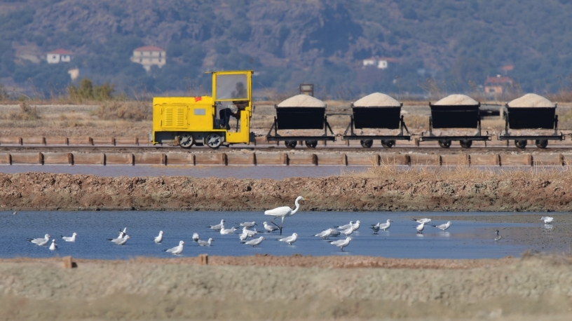 Salt harvest at Polichnitos Salt Pans Lesvos Greece